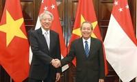 Mendorong hubungan kemitraan strategis Vietnam-Singapura