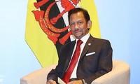 Sultan Brunei Darussalem akan melakukan kunjungan kenegaraan ke Vietnam