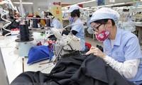 Hubungan ekonomi, perdagangan Vietnam- Rusia tidak henti-hentinya berkembang