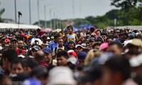 AS menangkap ratusan migran ilegal
