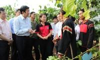Staatspräsident arbeitet mit dem Volksgericht der Provinz Dak Lak