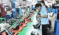 Vietnamesische Lederschuh-Unternehmen überwinden  Schwierigkeiten und wahren Chancen