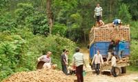 Die nachhaltige Armutsbekämpfung bis 2020 verstärken