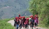 Das Leben der roten Dao in Ta Phin erfahren