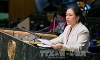 Vietnam fördert atomwaffenfreie Zonen
