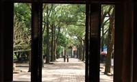 Con Son-Kiep Bac bewahrt die kulturelle Tradition und den Glauben des vietnamesischen Volkes
