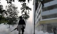 Warnung vor Verbreitung von Zika-Virus in Asien-Pazifik