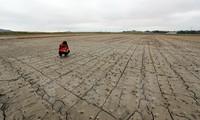 Bürgermeister aus aller Welt rufen G20-Spitzenpolitiker zum Kampf gegen den Klimawandel auf