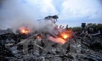 Absturz von Flug MH17: Prozess soll in den Niederlanden stattfinden