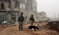 Syrische Armee befreit großes Gebiet vom IS