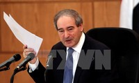OPVW-Delegation wird in Syrien eintreffen