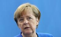Bundeskanzlerin Angela Merkel lehnt Zusammenarbeit mit AfD ab