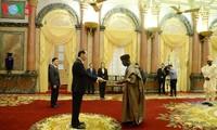 Staatspräsident Tran Dai Quang empfängt Botschafter Nigerias, Griechenlands und der USA