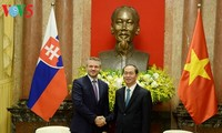 Staatspräsident Tran Dai Quang empfängt den slowakischen Vize-Premierminister in Hanoi