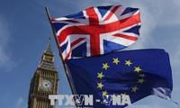 EU überredet Großbritannien, in der Zollunion nach dem Brexit zu bleiben