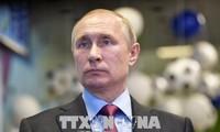 Wladmir Putin: Rakete, die Flug MH17 erschossen hat, gehört Russland nicht