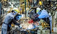 Die Zeitung Asia Nikkei Review schätzt den Fertigungssektor Vietnams