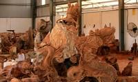 Entdeckung des Handwerksdorfs für Holzgravur Dong Giao