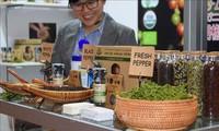 Chance zur Bewerbung von landwirtschaftlichen Tiefkühlprodukten aus Vietnam in Japan