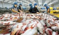 Export von Meeresfrüchten: Chancen wahrzunehmen
