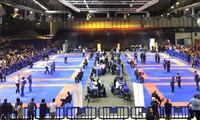 Wettkämpfe in vietnamesischem Kung Fu in Frankreich