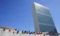 베트남과 유엔 안전보장이사회: '국가의 국제적 위신'