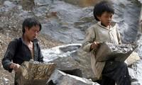 아동 노동 방지를 위한 많은 방안 모색