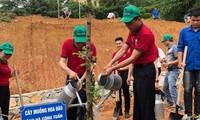 베트남의 토지 사막화와 황폐화 방지 강화