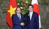 베트남-일본 고위급회담