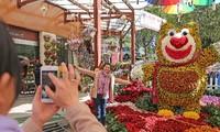 2019년 8차 달랏시 꽃축제