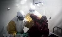 세계보건기구, 에볼라 '국제적 보건 비상사태' 선포