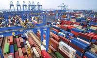 IMF, 2019년 세계 경제 성장 전망 하향 조정