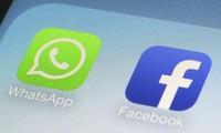 페이스북, 4개 국가의 많은 계정 삭제