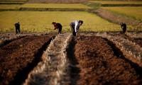 유엔, 조선에 대한 EU의 농기계 지원 허용