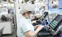 메콩 삼각주,1,600 개의 외국인직접투자 (FDI) 유치