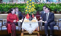 ប្រធានរដ្ឋសភាវៀតណាម លោកស្រី Nguyen Thi Kim Ngan អញ្ជើញជួបពិភាក្សាជាមួយលេខាគណៈកម្មាធិការបក្សខេត្ត Jiangsu (ចិន)