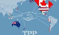越南政府准备呈交国会批准《跨太平洋伙伴关系协定》