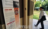 新加坡寨卡感染病例急增