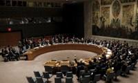 联合国安理会对朝鲜制裁影响几何