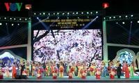 2017下龙安子樱花和黄梅节开幕