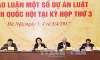 越南专职国会代表会议开幕