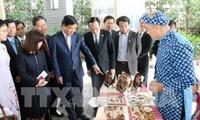 促进日本关西地区与越南胡志明市之间的合作与投资