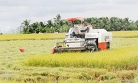 重组农业结构 适应气候变化