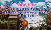 义安省举行西部春色晚会暨桑勘节入选国家级非物质文化遗产名录发布仪式