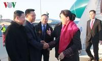 越南国会主席阮氏金银对荷兰进行正式访问:越荷关系——活跃、有效关系的典范