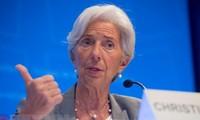 IMF敦促欧元区巩固财政能力