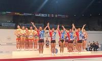越南在2018世界有氧运动体操比赛中获得三枚金牌
