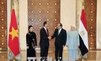 埃及总统塞西主持仪式欢迎越南国家主席陈大光 双方举行会谈