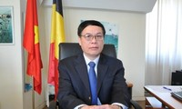 越南加强与欧洲的全面合作关系