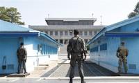 韩朝撤走板门店共同警备区内的哨所和武器装备